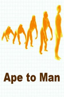 Ape to Man