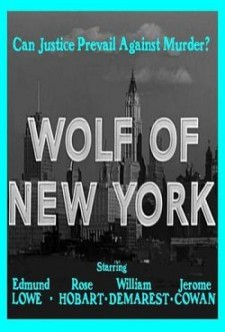 Wolf of New York