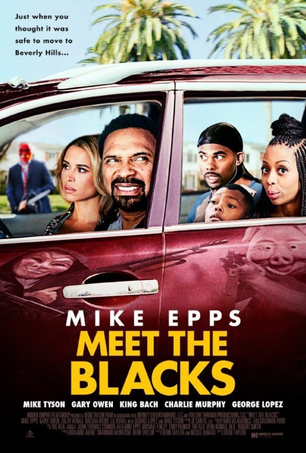 Affiche du film Meet the Blacks
