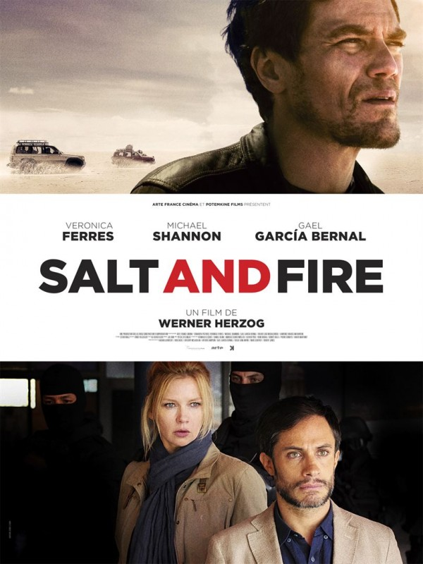 Affiche du film Salt and Fire