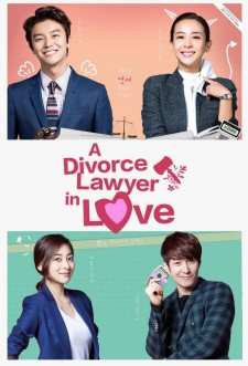 A Divorce Lawyer in Love