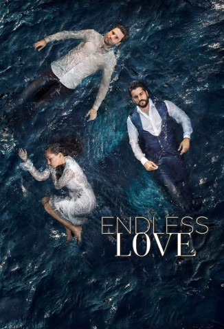 Endless Love (2015)