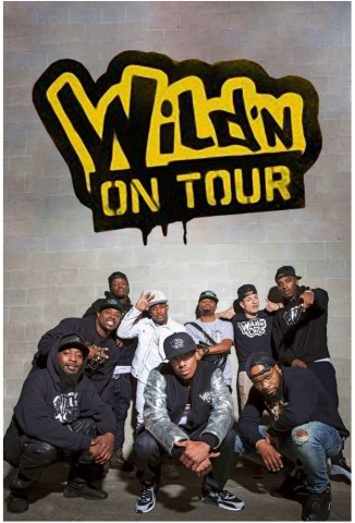 Nick Cannon Presents Wild N on Tour