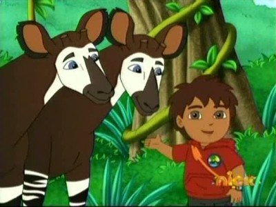 Where is Okapi's Brother?