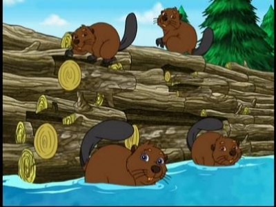 Diego Saves the Beavers