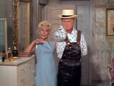 The Hooterville Image